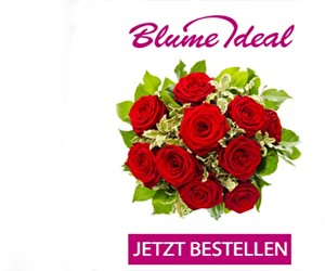 Aktion bei Blume Ideal